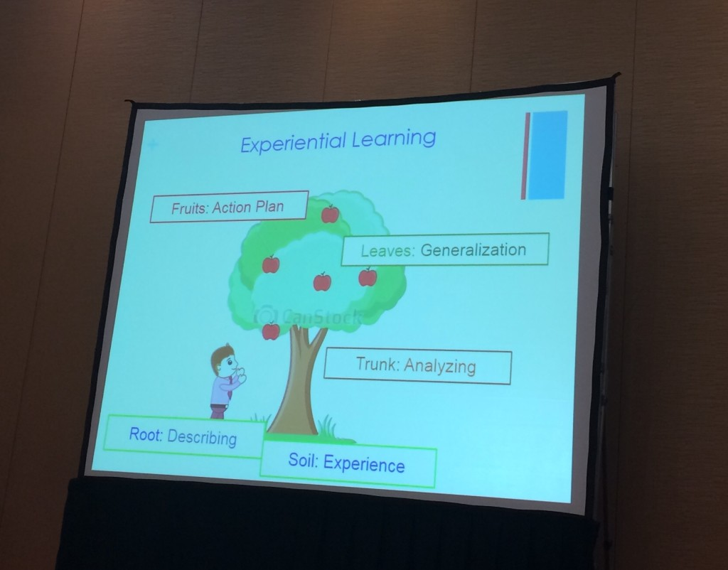 Taking teachers through the reflective process. A slide from the presentation Teacher Change Beyond Borders: Regional Impact of Experiential Professional Development byJosephine Kennedy, Kevin Giddens and Helena Simas,with World Learning and AMIDEAST, TESOL Convention 2016
