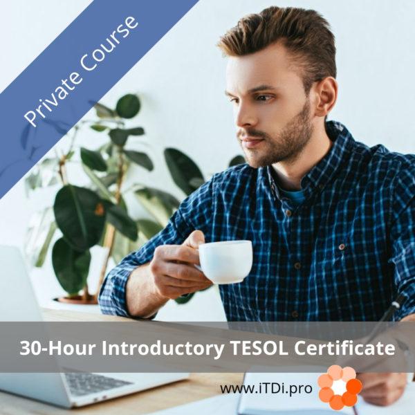 30-hour iTDi TESOL Certificate Private Course